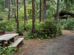 Jessie Honeyman Memorial State Park