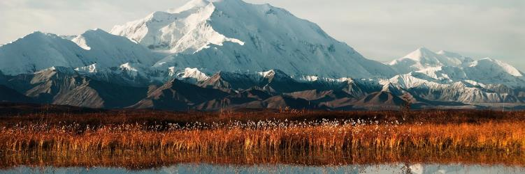 Travelhome Campervakanties Mount McKinley
